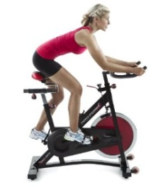 ProForm 290 SPX Exercise Bike